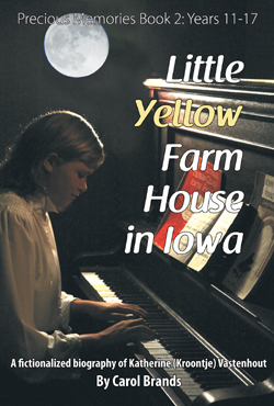 PM2 Little Yellow Farm House in Iowa